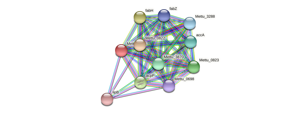 Mettu_0825 protein (Methylobacter tundripaludum) - STRING interaction network
