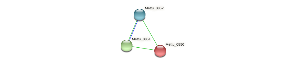 Mettu_0850 protein (Methylobacter tundripaludum) - STRING interaction network