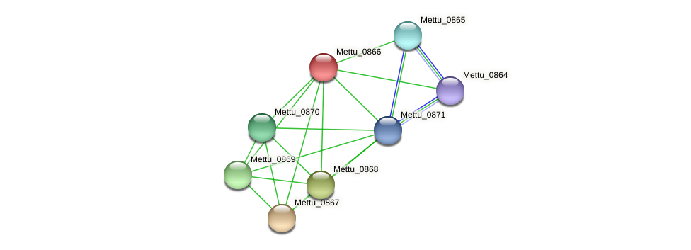 Mettu_0866 protein (Methylobacter tundripaludum) - STRING interaction network