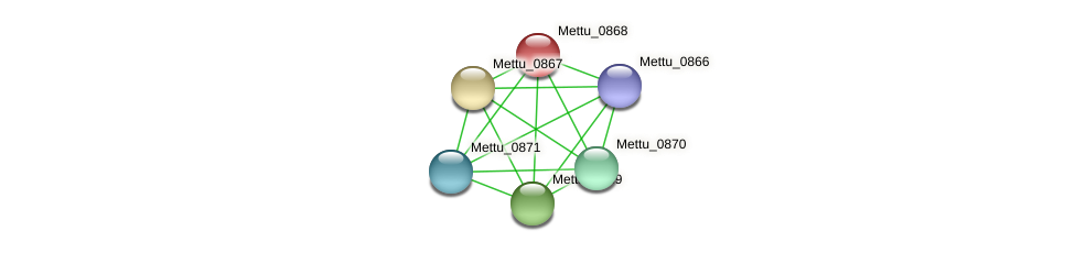 Mettu_0868 protein (Methylobacter tundripaludum) - STRING interaction network