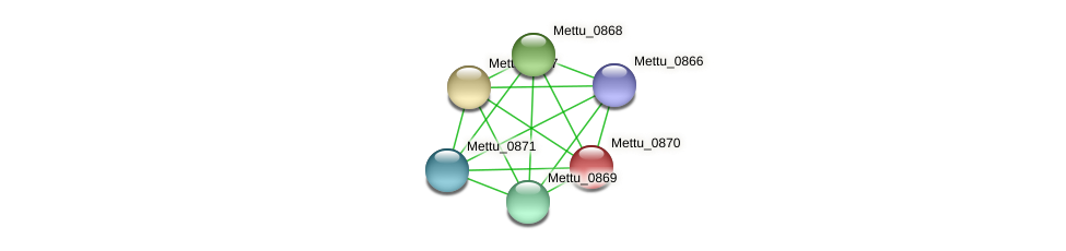 Mettu_0870 protein (Methylobacter tundripaludum) - STRING interaction network