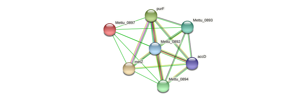 Mettu_0897 protein (Methylobacter tundripaludum) - STRING interaction network
