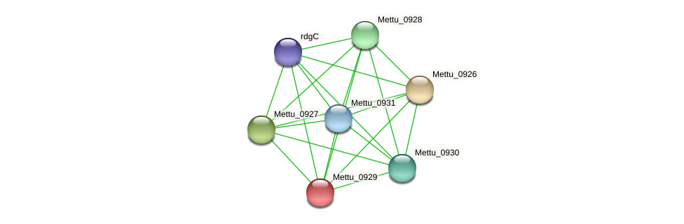 Mettu_0929 protein (Methylobacter tundripaludum) - STRING interaction network