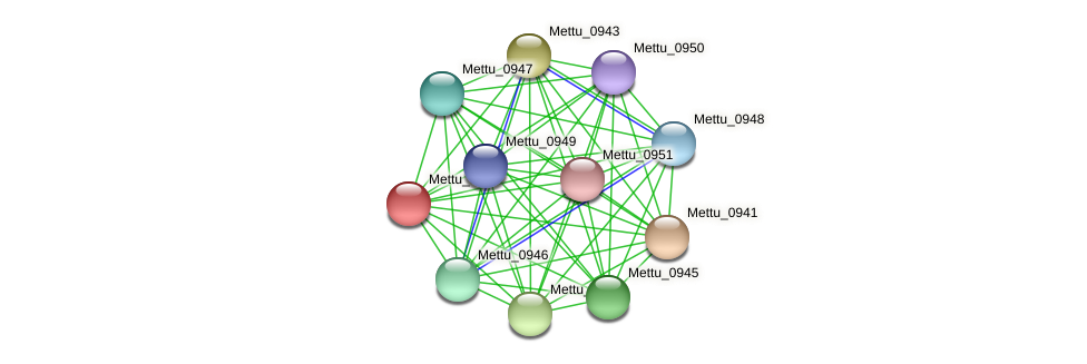 Mettu_0942 protein (Methylobacter tundripaludum) - STRING interaction network