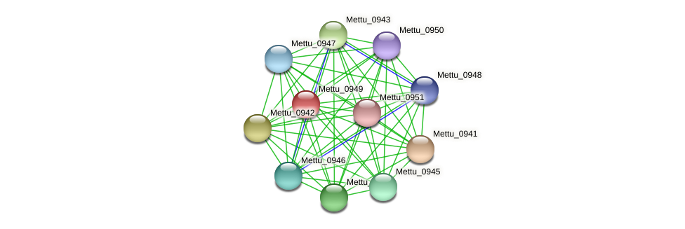 Mettu_0949 protein (Methylobacter tundripaludum) - STRING interaction network