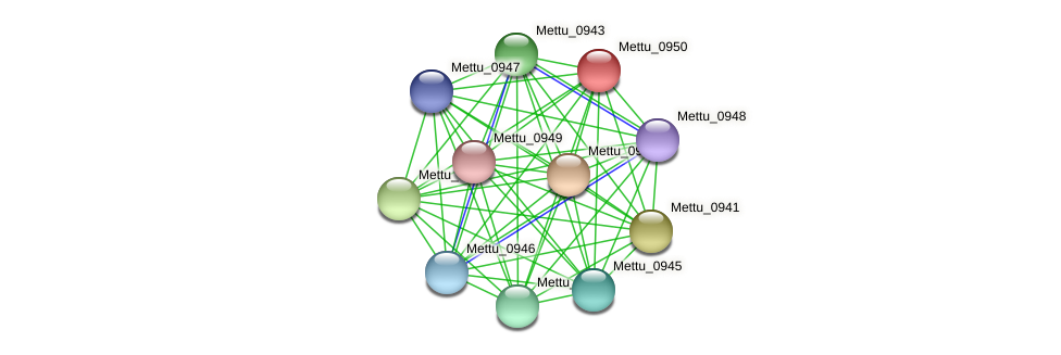 Mettu_0950 protein (Methylobacter tundripaludum) - STRING interaction network