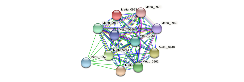Mettu_0953 protein (Methylobacter tundripaludum) - STRING interaction network