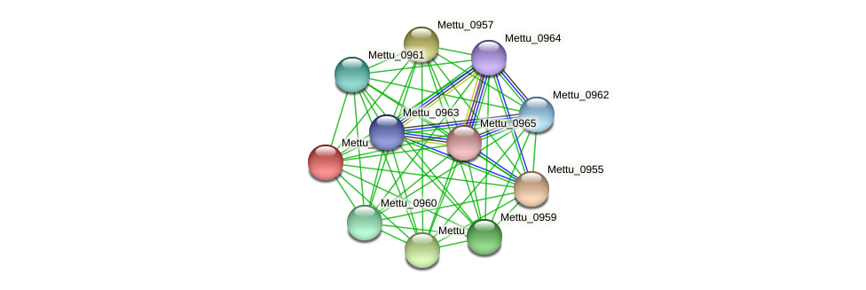 Mettu_0956 protein (Methylobacter tundripaludum) - STRING interaction network