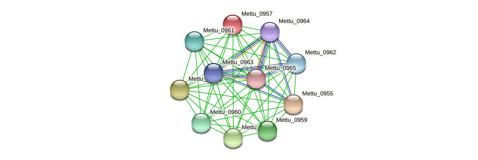 Mettu_0957 protein (Methylobacter tundripaludum) - STRING interaction network