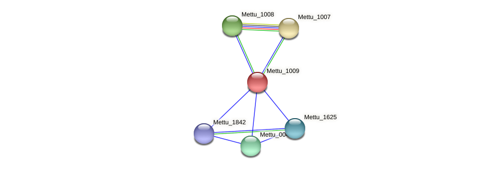 Mettu_1009 protein (Methylobacter tundripaludum) - STRING interaction network