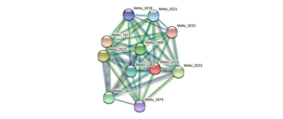Mettu_1033 protein (Methylobacter tundripaludum) - STRING interaction network