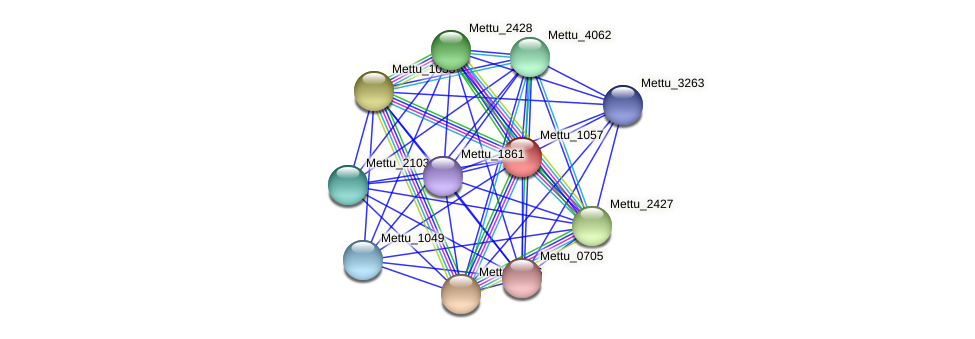 Mettu_1057 protein (Methylobacter tundripaludum) - STRING interaction network