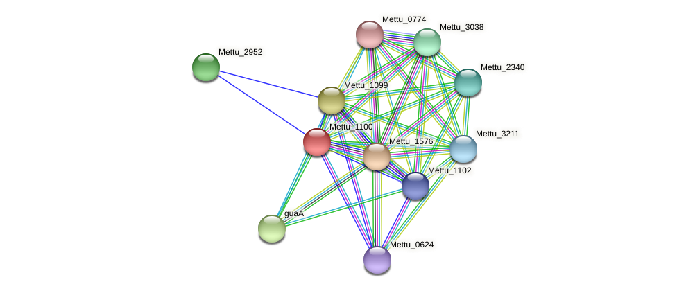Mettu_1100 protein (Methylobacter tundripaludum) - STRING interaction network