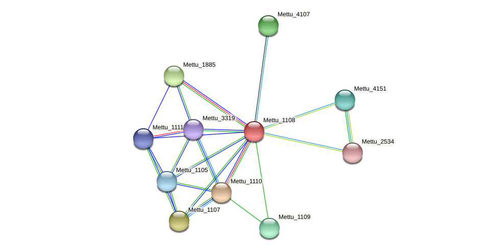 Mettu_1108 protein (Methylobacter tundripaludum) - STRING interaction network