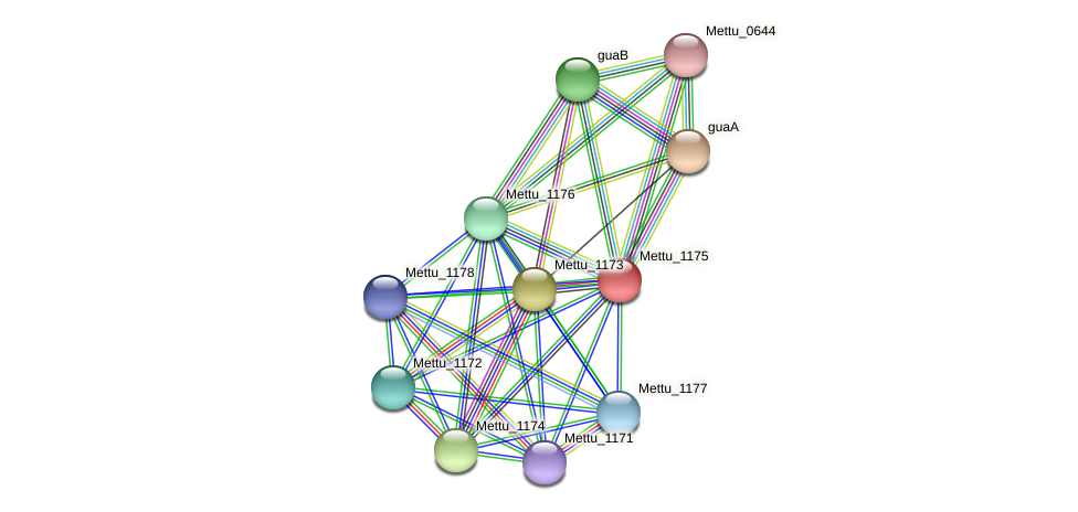 Mettu_1175 protein (Methylobacter tundripaludum) - STRING interaction network