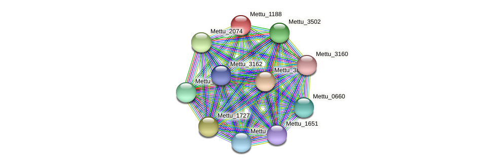 Mettu_1188 protein (Methylobacter tundripaludum) - STRING interaction network