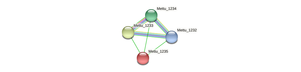 Mettu_1235 protein (Methylobacter tundripaludum) - STRING interaction network