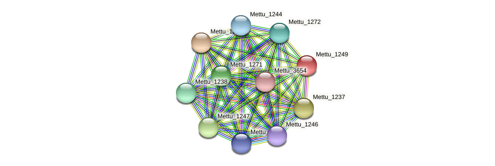 Mettu_1249 protein (Methylobacter tundripaludum) - STRING interaction network