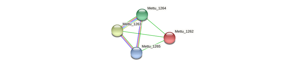 Mettu_1262 protein (Methylobacter tundripaludum) - STRING interaction network