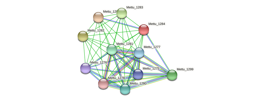 Mettu_1284 protein (Methylobacter tundripaludum) - STRING interaction network