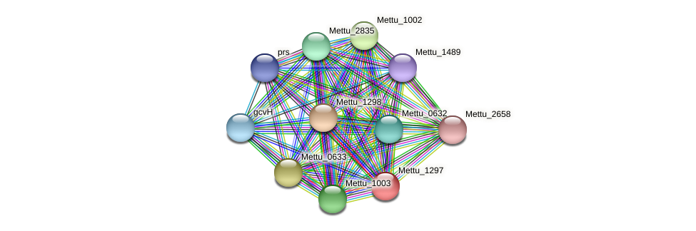 Mettu_1297 protein (Methylobacter tundripaludum) - STRING interaction network