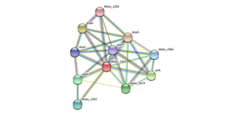 Mettu_1304 protein (Methylobacter tundripaludum) - STRING interaction network