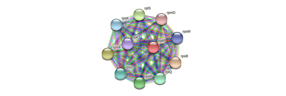 rplP protein (Methylobacter tundripaludum) - STRING interaction network