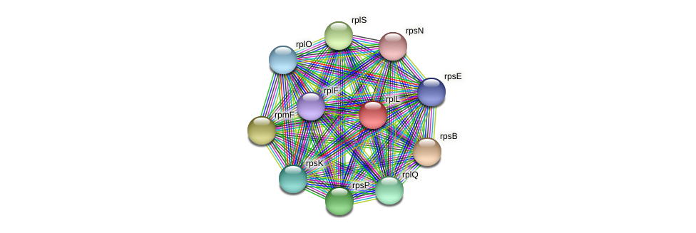 rplL protein (Methylobacter tundripaludum) - STRING interaction network