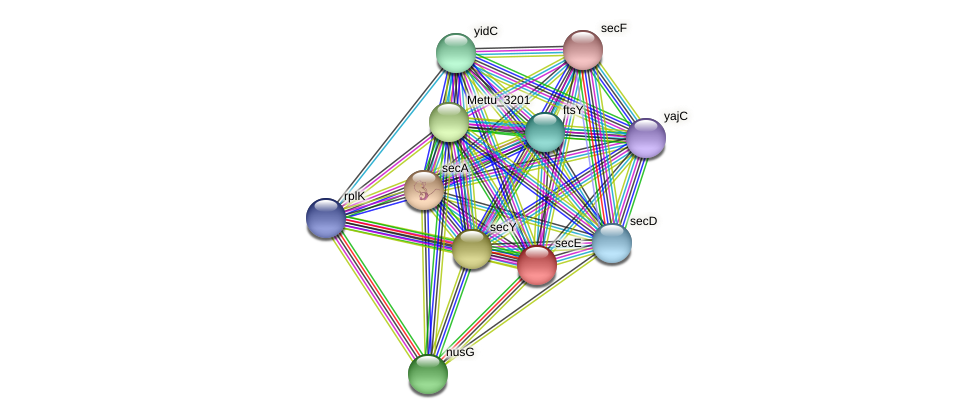 Mettu_1347 protein (Methylobacter tundripaludum) - STRING interaction network