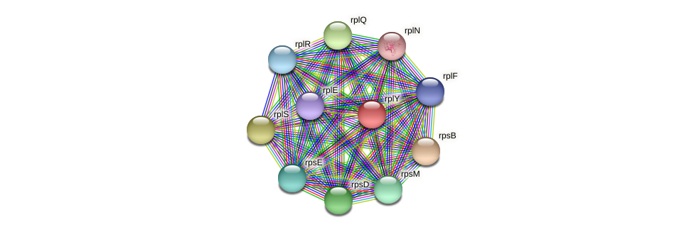 ctc protein (Methylobacter tundripaludum) - STRING interaction network