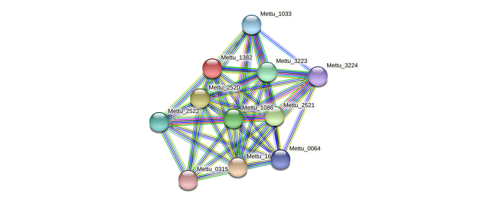 Mettu_1382 protein (Methylobacter tundripaludum) - STRING interaction network