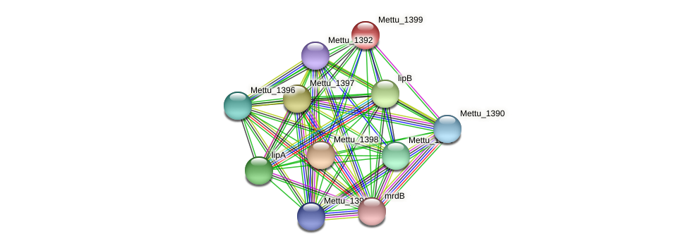 Mettu_1399 protein (Methylobacter tundripaludum) - STRING interaction network