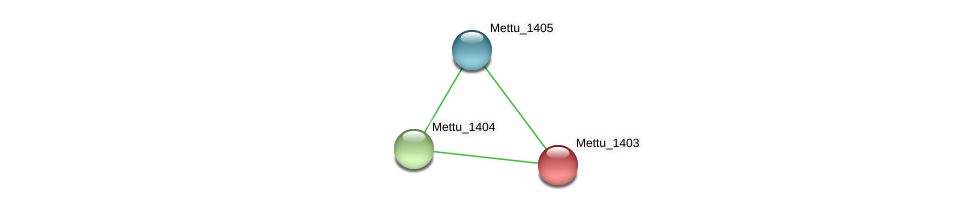 Mettu_1403 protein (Methylobacter tundripaludum) - STRING interaction network