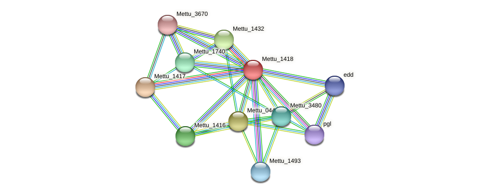Mettu_1418 protein (Methylobacter tundripaludum) - STRING interaction network