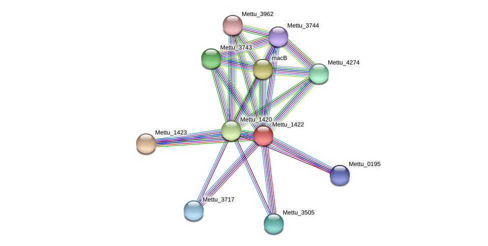 Mettu_1422 protein (Methylobacter tundripaludum) - STRING interaction network