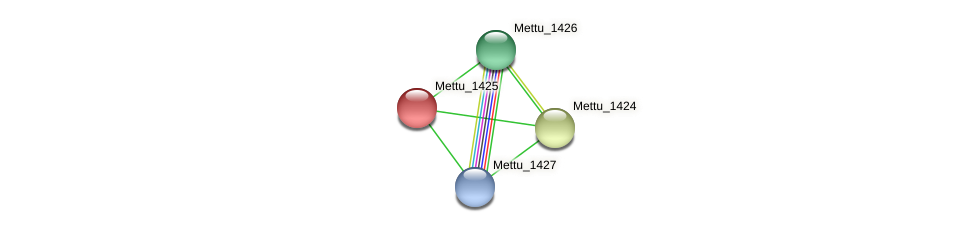 Mettu_1425 protein (Methylobacter tundripaludum) - STRING interaction network