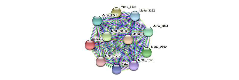 Mettu_1426 protein (Methylobacter tundripaludum) - STRING interaction network