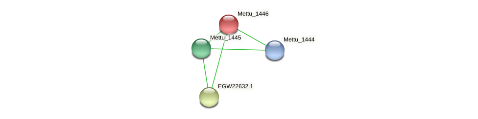 Mettu_1446 protein (Methylobacter tundripaludum) - STRING interaction network