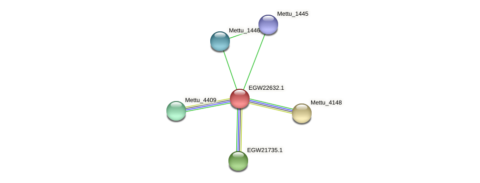 Mettu_0512 protein (Methylobacter tundripaludum) - STRING interaction network
