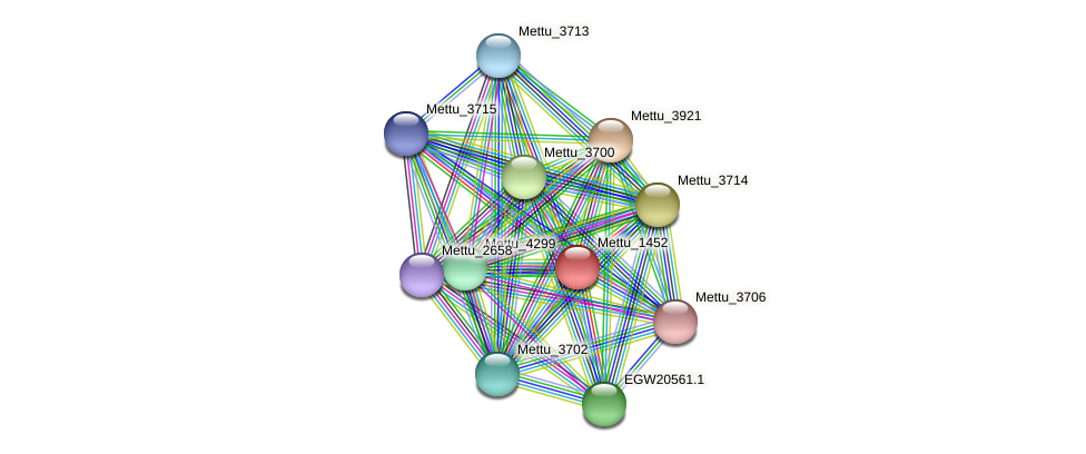 Mettu_1452 protein (Methylobacter tundripaludum) - STRING interaction network