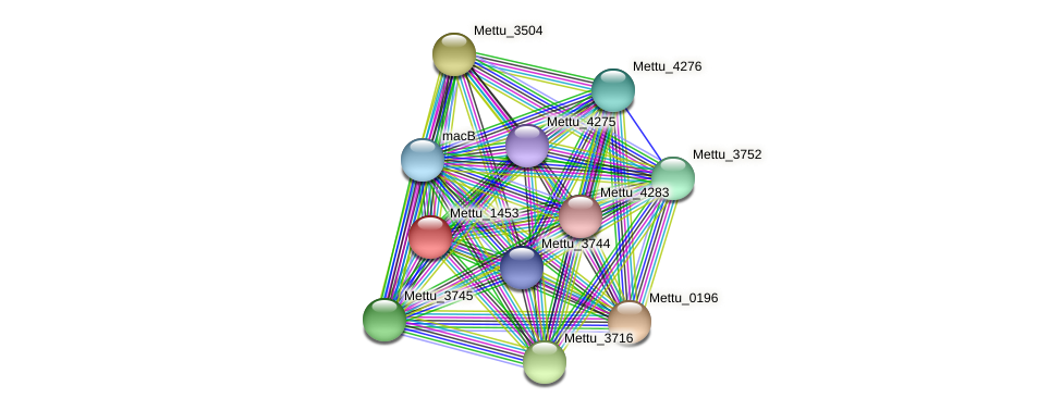 Mettu_1453 protein (Methylobacter tundripaludum) - STRING interaction network