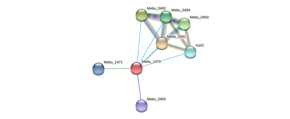 Mettu_1470 protein (Methylobacter tundripaludum) - STRING interaction network
