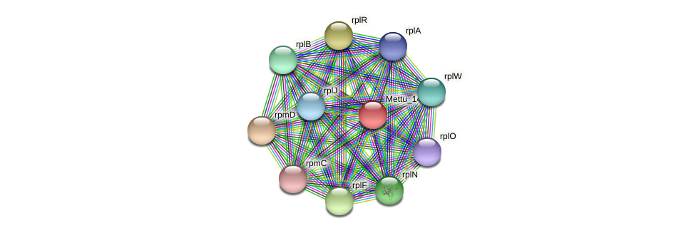 Mettu_1492 protein (Methylobacter tundripaludum) - STRING interaction network