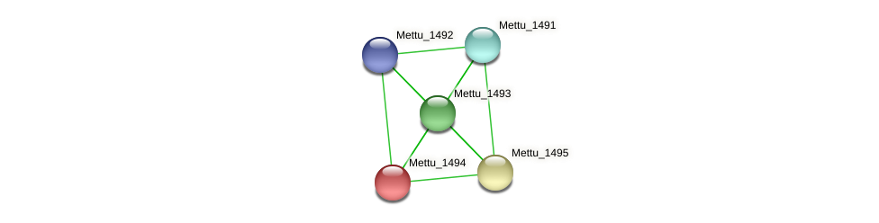 Mettu_1494 protein (Methylobacter tundripaludum) - STRING interaction network