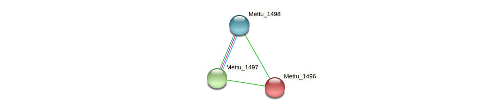 Mettu_1496 protein (Methylobacter tundripaludum) - STRING interaction network