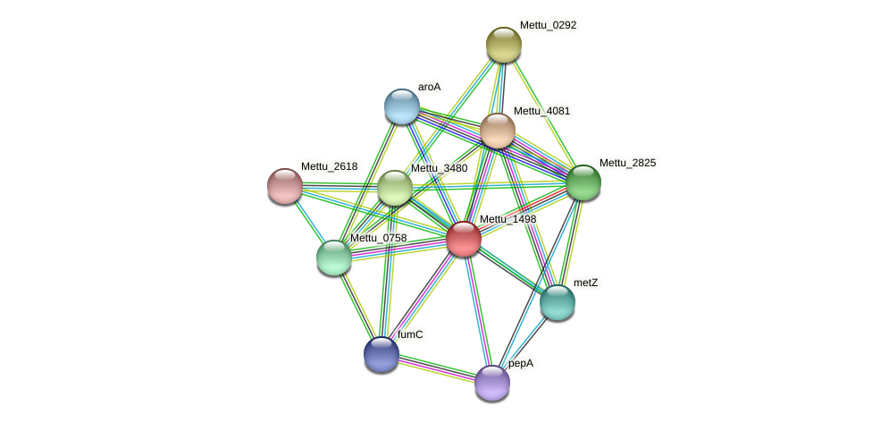 Mettu_1498 protein (Methylobacter tundripaludum) - STRING interaction network