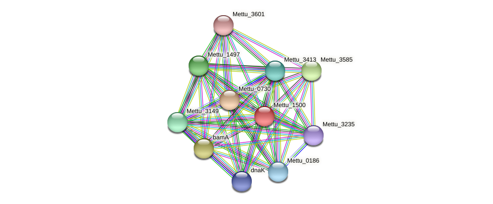 Mettu_1500 protein (Methylobacter tundripaludum) - STRING interaction network
