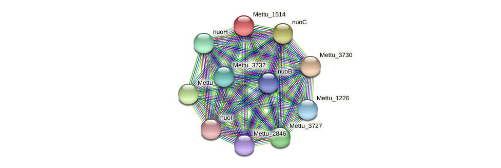 Mettu_1514 protein (Methylobacter tundripaludum) - STRING interaction network
