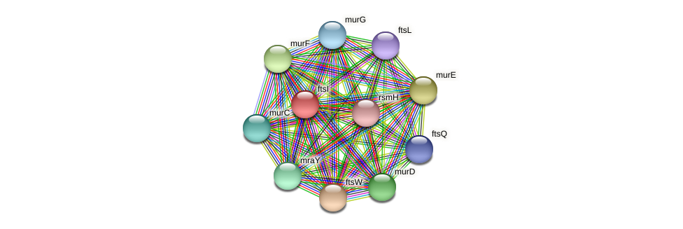 Mettu_1529 protein (Methylobacter tundripaludum) - STRING interaction network