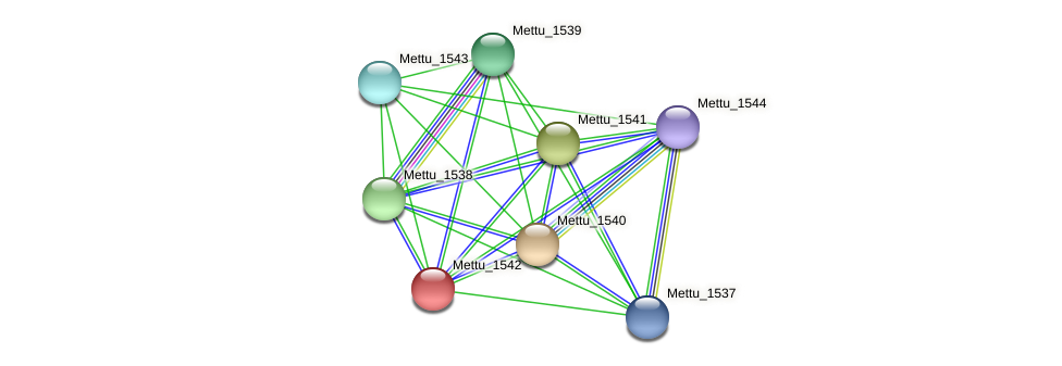 Mettu_1542 protein (Methylobacter tundripaludum) - STRING interaction network
